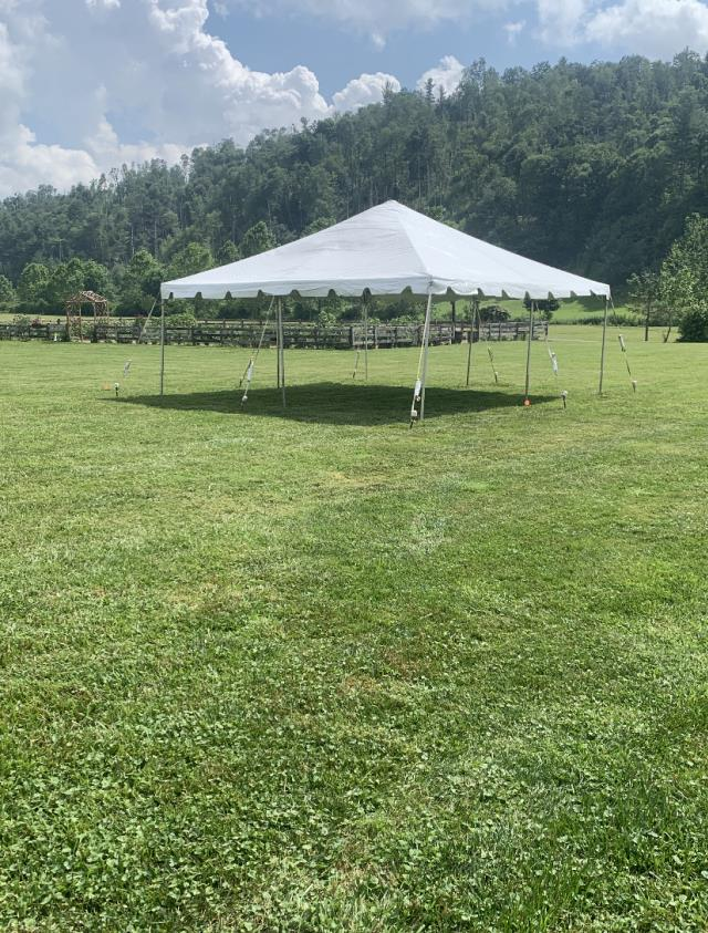 Where to find CANOPY 20X20 FRAMED WHITE in Boone